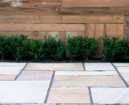 Mint Indian Sandstone
